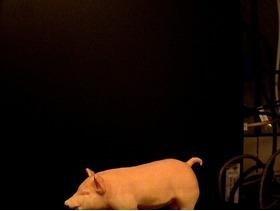 3D扫描的小猪雕像